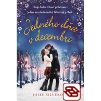 Jedného dňa v decembri - Dvaja ľudia. Desať príležitostí. Jeden nezabudnuteľný ľúbostný príbeh.