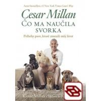 Čo ma naučila svorka - Príbehy psov, ktoré zmenili môj život